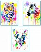 Rinkiniai tapyti akvareliniais dažais Rosa pagal kontūrus